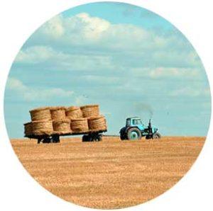 whole farm revenue protection service